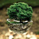 Achat de voiture – Bonus-malus écologique en 2021