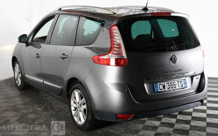 RENAULT GD SCENIC III DCI 130 ENERGY FAP ECO2 7PL GRIS CW-386-TS