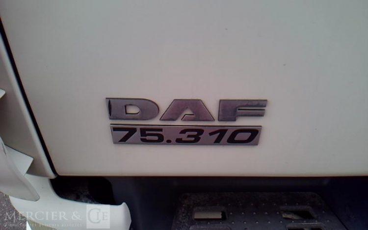 DAF 19T BLANC DM-284-LR