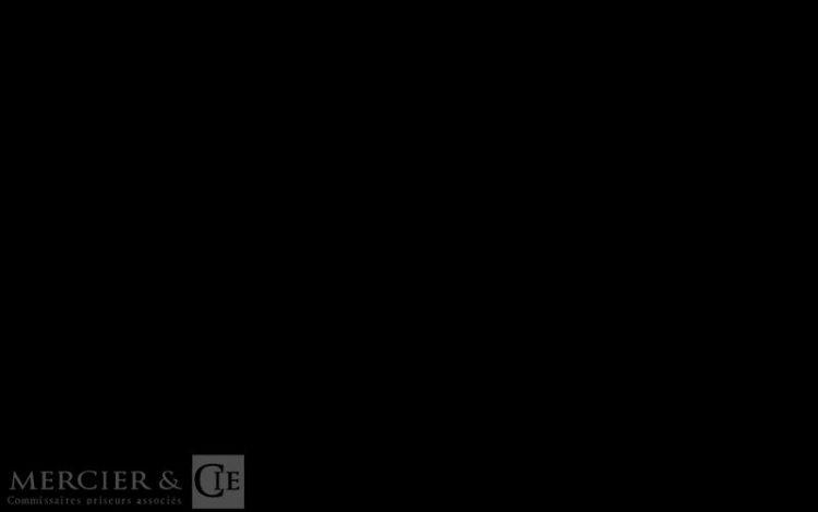 GARELLI GVLP MATIC – AN 1976 – 49CC BLEU 81435